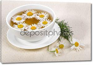 Чай с цветами ромашки