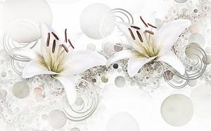 Белые лилии с кружками