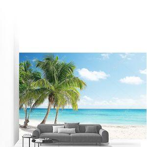 Карибское море и кокосовые пальмы