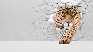 Леопард из стенки