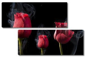 Розы в дыму