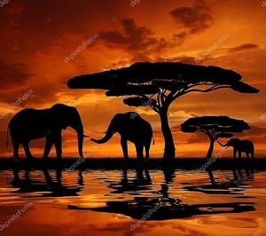 Силуэт двух слонов