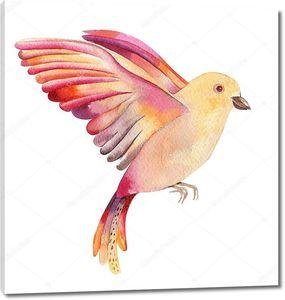 Акварельная птица в полете