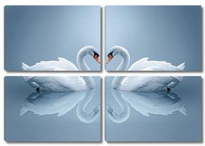 Лебеди и их отражение