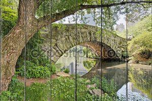 мост в центральном парке