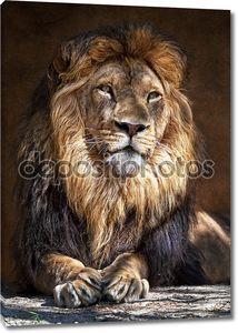 Лев King2