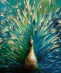 Красивый павлиний хвост