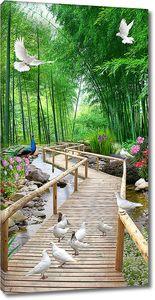Мостки в бамбуковом лесу