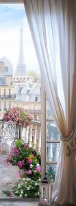 Париж с милого балкончика