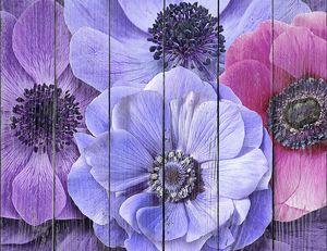 Крупные цветы на всю стену