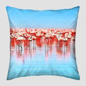 Фламинго Африки на озере