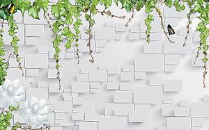 Вьюнок по стене