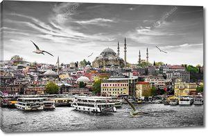 Стамбул, столица Турции