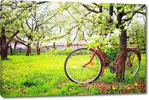 ретро красный велосипед парковка рядом с дерева в парке