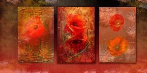 Картины с яркими маками