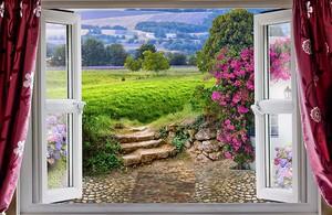 Вид из окна на зеленый сад