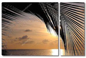 Закат на пляже с фоном из листьев
