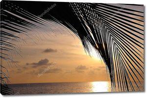 Пляж закат фон