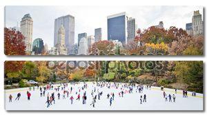 Skating in New York