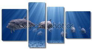 Дельфины в лучах солнца