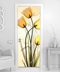 Прозрачные  желтые тюльпаны