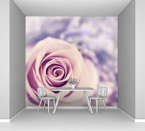 Мечтательный розовый бутон розы