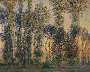 Моне Клод. Тополя в Живерни, 1888