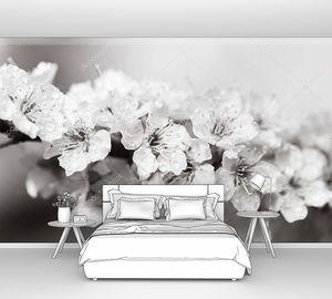 Белые цветы после дождя