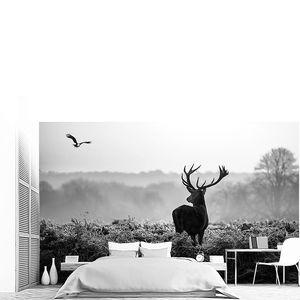 Фото оленя в тумане