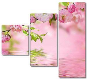 Розовый цветок в весеннем саду