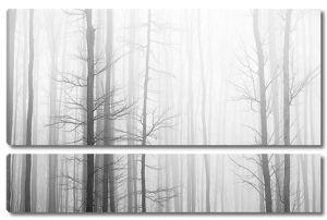 Серая туманность