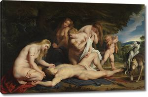 Рубенс. Смерть Адониса (с Венерой, тремя грациями и Амуром)