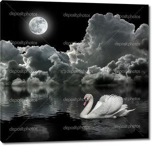 Белый Лебедь ночью под луной