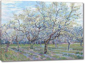 Ван Гог. Сад с цветущими сливами