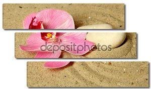 Дзэн Сад с рейковым песок и заделывают круглый камень