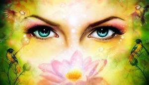 Цветок лотоса и женские глаза