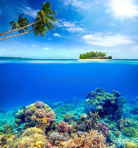 красивый коралловый риф на фоне небольшой остров