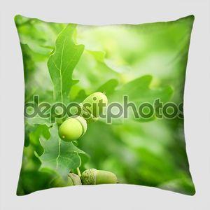Зеленый дубовые листья и жёлуди
