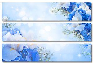 Голубые ирисы