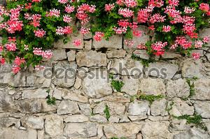 Живописная каменная стена