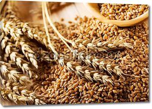 Зерна пшеницы на деревянном столе