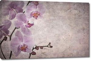 Орхидеи на винтажном фоне