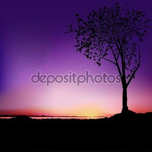 Восход - дерево и озеро