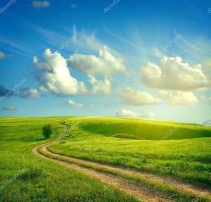 Летний пейзаж с зеленой травой