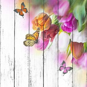 Нежный тюльпаны с бабочки