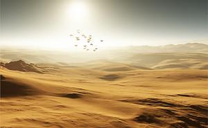 Пустынный край