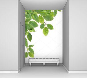 Зеленая граница из листьев