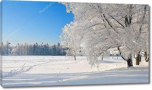 Опушка зимнего леса
