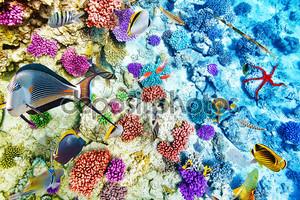 Морской подводный мир