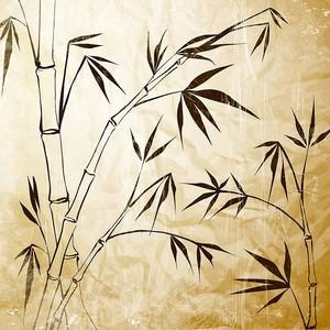 Бамбуковая  иллюстрация